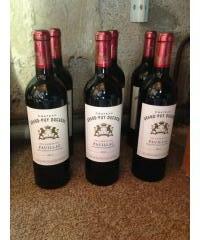 Vin Bordeaux (PAUILLAC) 2011
